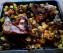 pollo al forno con patate e porcini