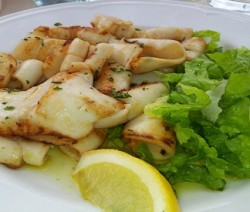 calamari alla griglia con maionese